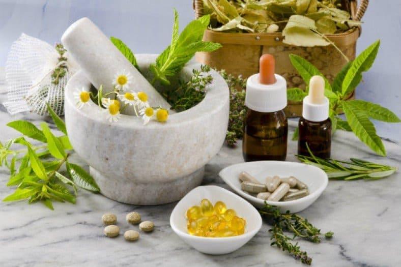 12 plantas medicinales que no pueden faltar en tu casa son extraordinarias 12 plantas medicinales que no pueden faltar en tu casa, ¡son extraord ID174283 - hermandadblanca.org
