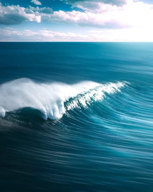 pexels photo 1656579 madre divina: la marea ha cambiado segunda parte ID173196 - hermandadblanca.org