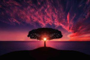 Saúl dice: «Encontrarán la paz y la autoaceptación en cuanto el Amor que son se despierte en sus conciencias», Parte 1