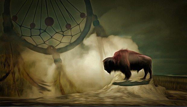 buffalo sueños hermosos