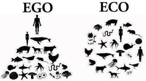 ego eco copia 2 las tentadoras habilidades del ego ID177161 - hermandadblanca.org