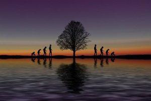 Mensaje Hermandad Blanca cósmica: Elimina tu carga a través de la actualización y evolución