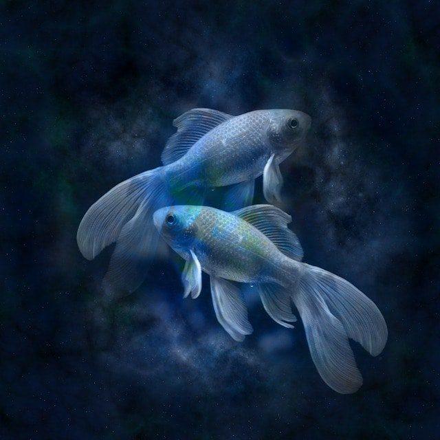 horoscopo semanal 2019 del 29 de abril al 05 de mayo piscis horóscopo semanal 2019 del 29 de abril al 05 de mayo, borra el karma ID177167 - hermandadblanca.org