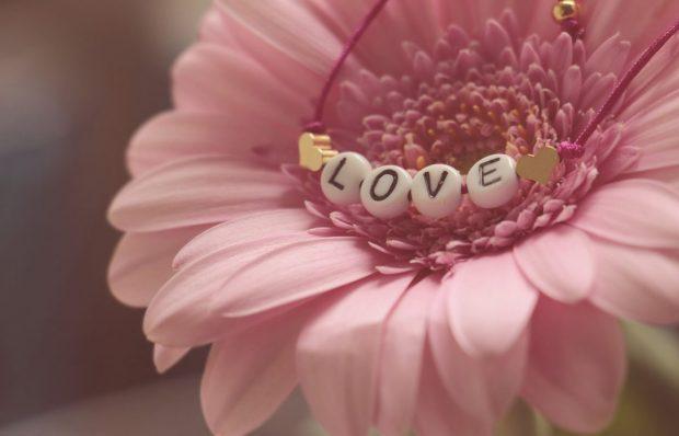 rosa que dice amor en trauma de omision y como sanarlo ¿has escuchado hablar del trauma de omisión? y de ¿como sanarlo? ID174683 - hermandadblanca.org