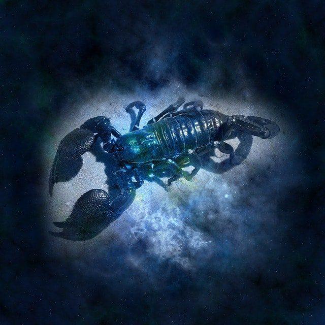 scorpion horóscopo semanal 2019 del 29 de abril al 05 de mayo, borra el karma ID177167 - hermandadblanca.org