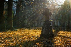 sonar con la muerte 1a significado de soñar con la muerte ID175577 - hermandadblanca.org