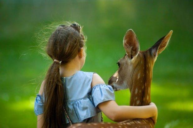 adorable animal animal park 1172000 arcángel gabrielle: ahora es el momento de tener una regla de amor ID185775 - hermandadblanca.org