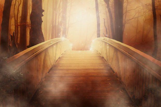 puente de oro mensajes del cielo: ¡que el amor ilumine este mundo! ID201477 - hermandadblanca.org
