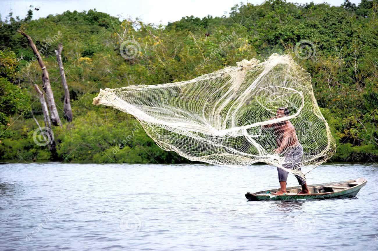red pesca - sanar y ser sanados ID203813 - hermandadblanca.org