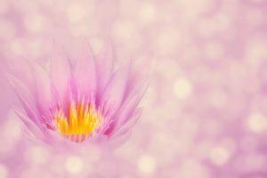¿Conoces la maravillosa Meditación Soul Sync?