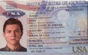 pasaporte spiderman los misterios y los elementales ID205705 - hermandadblanca.org