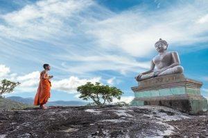 Mensaje de Adama: Conectando la meditación en elTemplo de la Iluminación