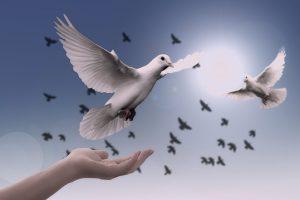 Frases Espirituales para cada ocasión, ¡vence la oscuridad de tus días!