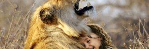 imprimiendo el amor la conciencia colectiva de la humanidad imprimiendo el amor en la conciencia colectiva de la humanidad ID209495 - hermandadblanca.org