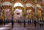 reencarnacion en la historia europea 1 civilizacion arabe i211619