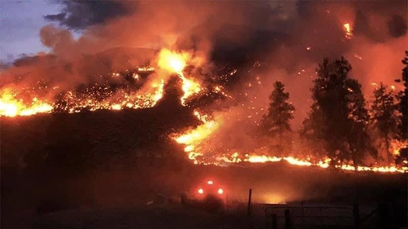 incendios en la selva amazonica mensaje para los trabajadores de la luz incendios en la selva amazon i212463