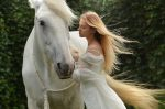 que significa soar con caballos que significa soar con caballos es asombroso i212846