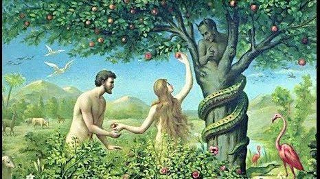 sonar con serpientes en la religion cristiana soar con serpientes que significa es asombroso lo que sabra i212137