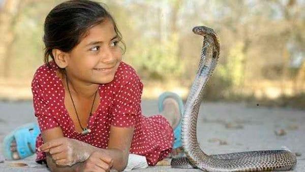 sonar con serpientes en la religion hindu soar con serpientes que significa es asombroso lo que sabra i212137