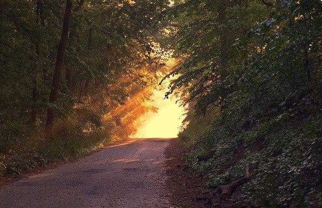 sunlight 166733 640 mensaje del arcangel miguel juntos podemos cambiar todo i211901