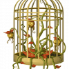 bird cage 575823 960 720 anna bonus kingsford sueo 6 insensatez i213838