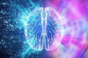 Reflexiones: La consciencia