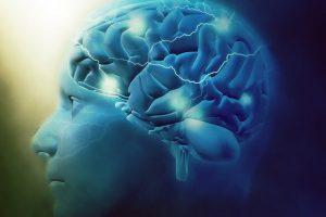 Reflexiones: La mente