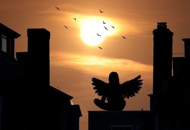 angel viendo el atardecer lesli white 5 historias reales de visitantes provenientes del ciel i215328