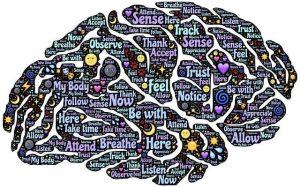 imagen de john hain en pixabay que le pasa al cerebro cuando meditamos la ciencia ofrece 3 benefi i215649