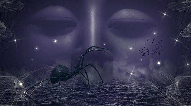 soñar con arañas todos los dias soñar con arañas conoce lo que significa desde los distintos aspe i214961