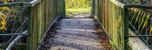 bridge 3813661 640 las vidas en la tierra y el ciclo karmico personal mensaje de jeshua i216169
