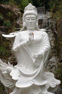 autocompasion mensaje de quan yin via kath i215884