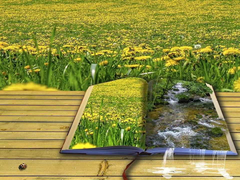 picture book 1983812 960 720 anna bonus kingsford el poeta como personalidad celestial 64 i216036