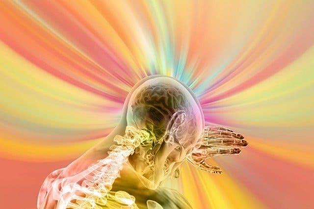 brain 4490831 640 adama de telos la triple curacion nervios sangre y meridianos part i217459
