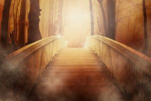 bridge 19513 1920 los 4 pasos para convertirte en tu ser superior mensaje del consejo a i217225