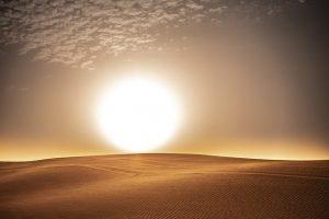 La luz es la liberadora de la Tierra. Ivo de Vega a través de Sharon Stewart