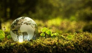 ecologia industrial 600x345 economia circular mirada macro i214031