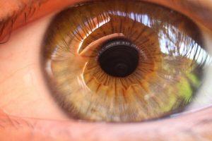 eye 4682340 640 el consejo de luz pleyadiano i217509