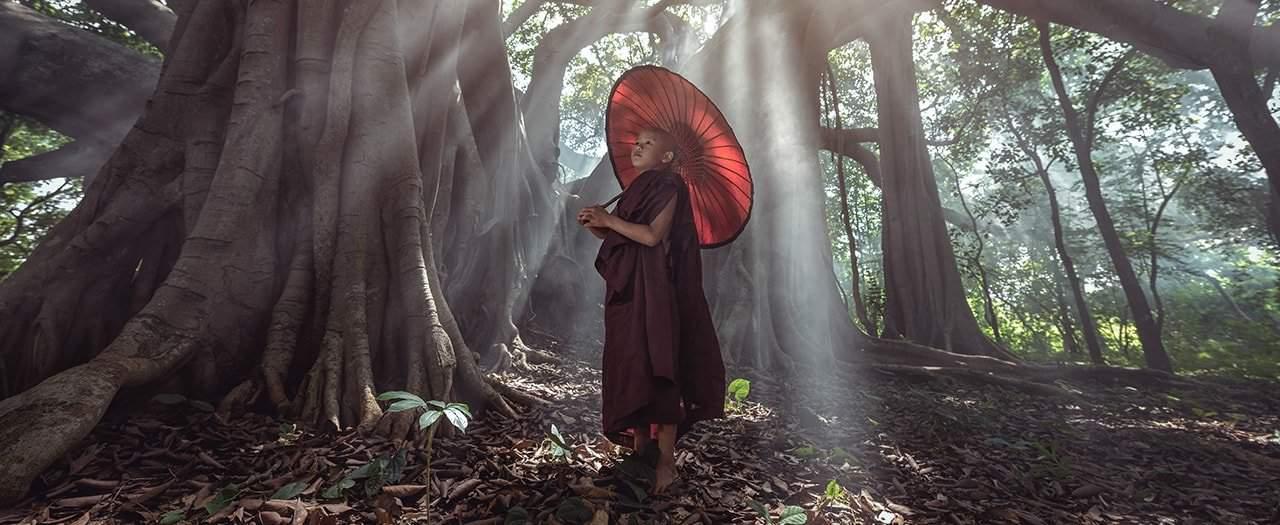 hermandad blanca juan sequera reflexiones reencarnacion 01 reflexiones la reencarnacion i217218