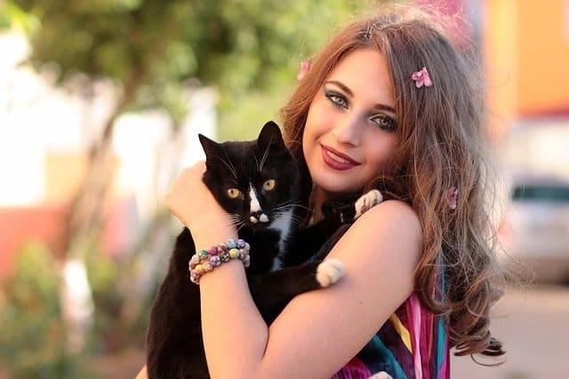 soñar con un gato acicalandolo cual es el significado de soar con un gato negro conoce de cerca i217964