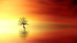 sunset 3156440 640 presencia pura y profundizacion de nuestras experiencias con el alma i217053