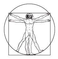 vitruvian el viaje de la geometria sagrada i218260
