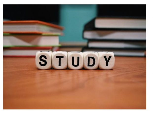 escuela 2 desarrollo personal y social otros indicadores de calidad educativa i219401