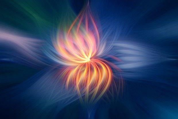 flower 2536651 640 las semillas atomicas de la memoria divina mensaje del arcangel mig i218558