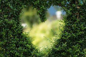 4 pasos para saber como entiende la metafísica que es el amor