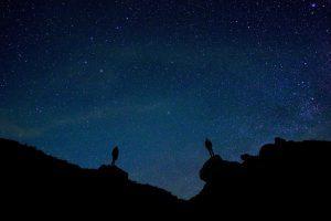 Las 10 estrellas más brillantes en el cielo nocturno