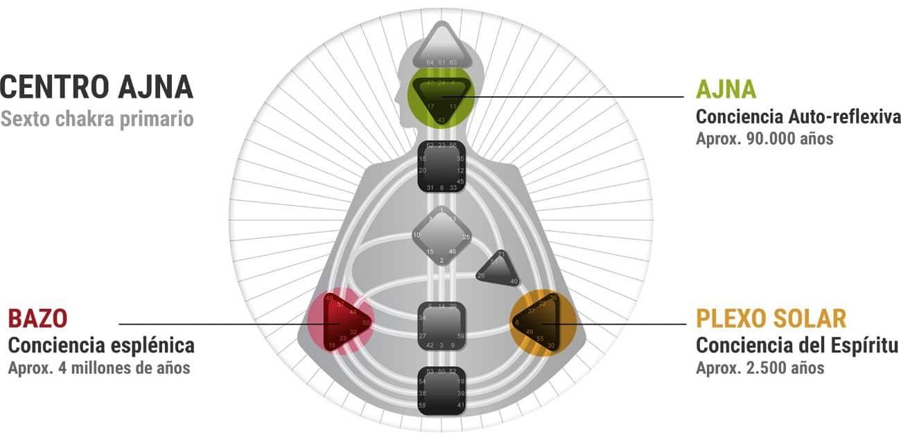 hermandad blanca reflexiones diseo humano juan sequera 09 reflexiones el sistema de diseo humano i220440