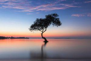 8 maneras de mantener la calma incluso en las situaciones más difíciles
