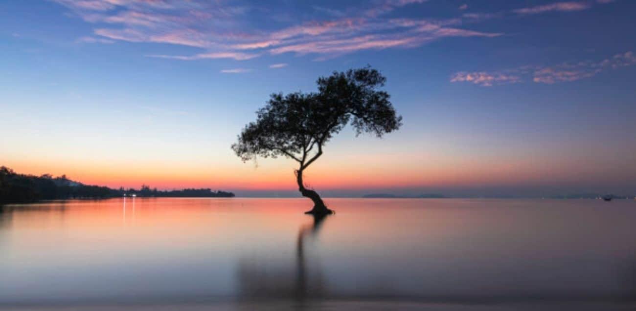 hermandad blanca reflexiones yin yang trascendencia juan sequera 04 reflexiones origen significado y trascendencia del yin yang i220822