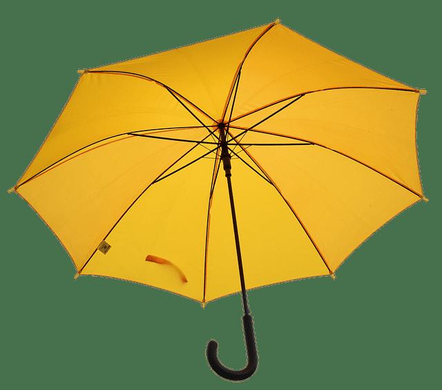 pesimismo y paraguas